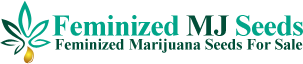 Feminized Marijuana Seeds Logo